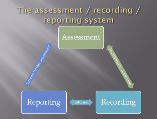Assessreportrecord%20system%201.png